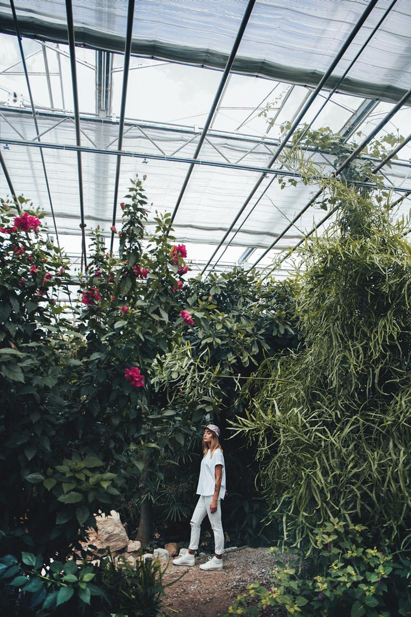 Paris+Hendzel — kšiltovka — snapback — — pětipanelka — 5 panel — rostlinné motivy — Industrial Plants